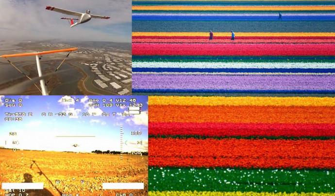 Посмотреть с авиамодели на поля тюльпанов