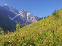 Первый Кавказ, Август 2010